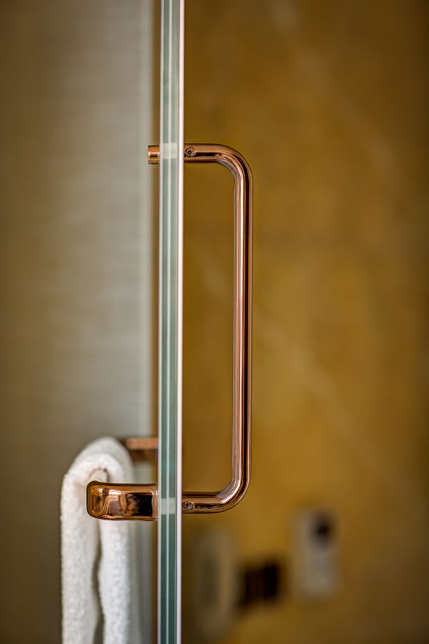 Handle for the shower door