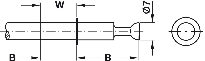 Doppelbolzen Häfele Minifix mit Seegerring B24//16 mm