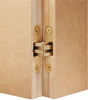 Hinge, concealed, for flush interior doors
