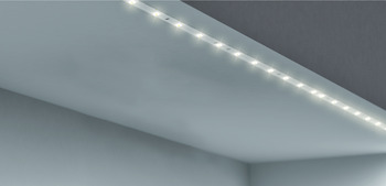 LED strip lights, Flexible+can be shortened, LED 3011 – Loox, 0.9/5.6 W, 24 V, 0.33/2 m, 36 LEDs/m, dw/cw/ww