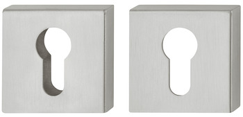 Security PC escutcheon , stainless steel, Startec, without cylinder cover