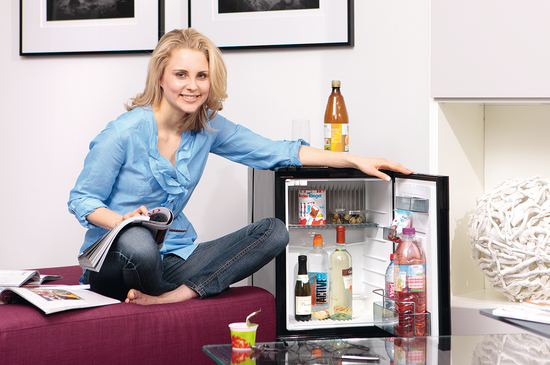 Minibar Kühlschrank Integrierbar : Kühlschrank dometic minibar rh ldbi liter online bei